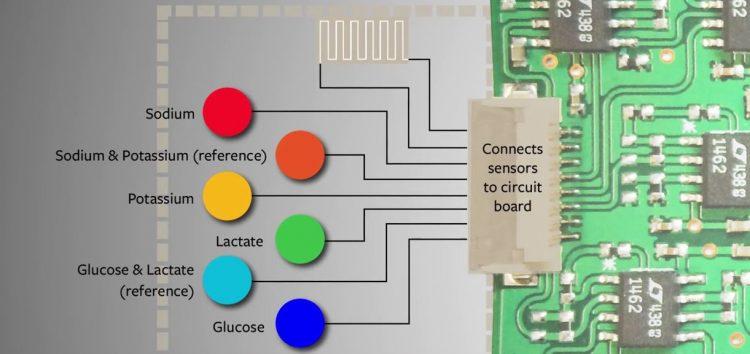 Schweißsensor im Armband als Chemielabor