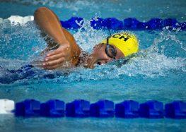 Wearables im Schwimmsport: Adaption und Praktikabilität der Informationsübertragung